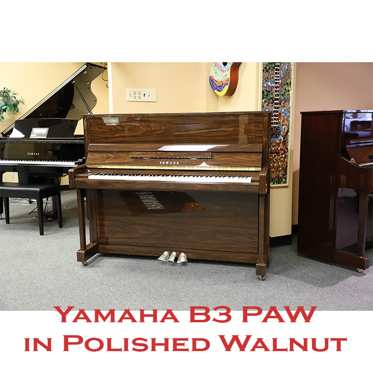 yamaha b3 polished walnut