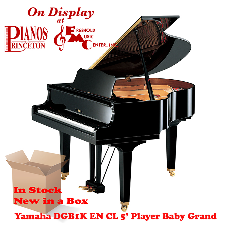 dgb1kencl player piano